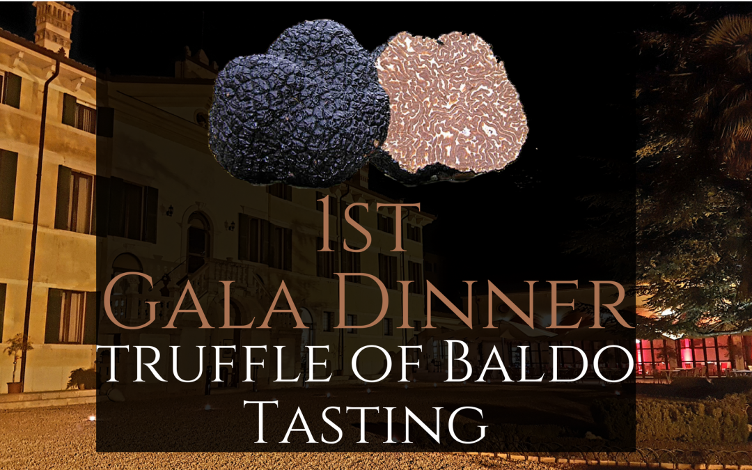 Gala Dinner – Black truffle of Baldo Tasting